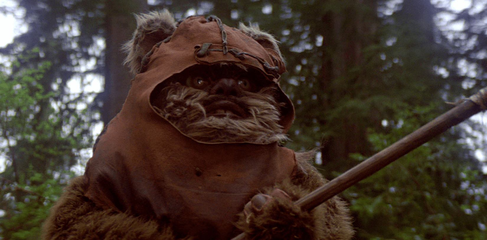 Poor Ewoks, never had a chance (video)